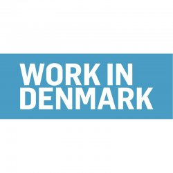 Back-end developer, Denmark